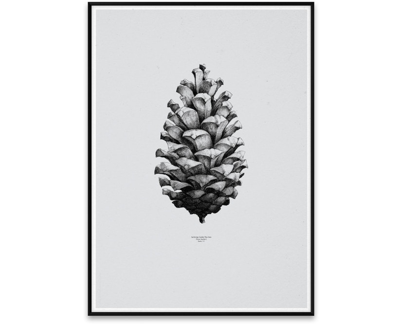 Paper Collective - 1:1 Pine Cone Poster - grijs - 1