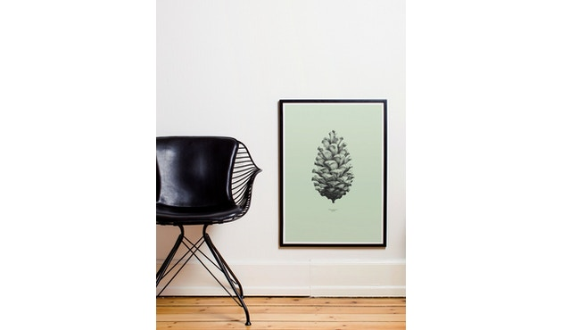 Paper Collective - 1:1 Pine Cone Poster - 01 - mint - 2