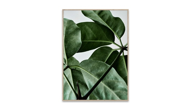Paper Collective - Green Home - Green Home 01 - 30 x 40 cm - 1