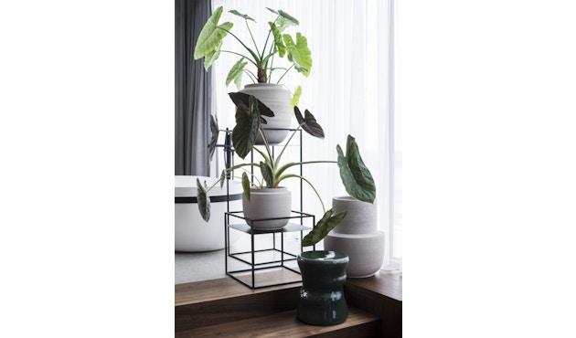 Plant Display Rek