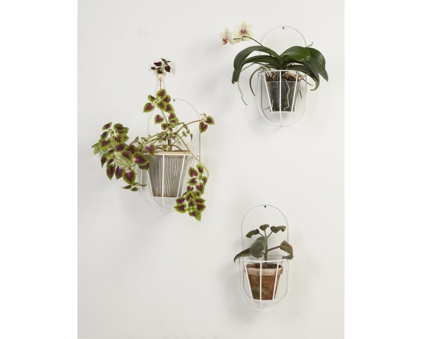 OK Design - Cibele Pflanzen Wandhalter - 4