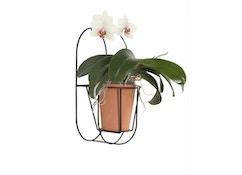OK Design - Cibele muur plantenstandaard  - 4