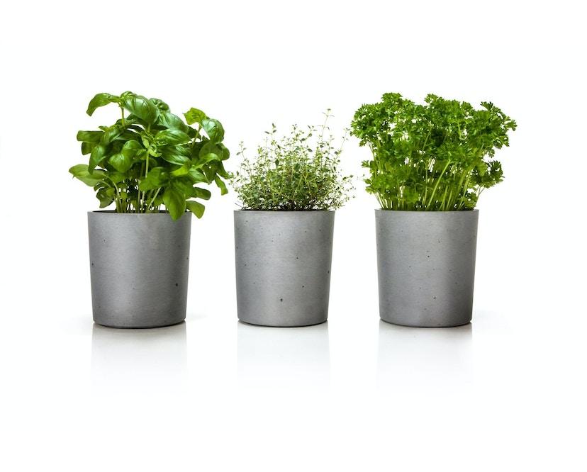 Spicepot Blumentopf 3er Set - beton