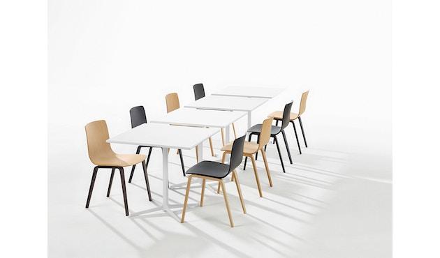Arper - Aava stoel - Berk natuur - berk natuur - 1