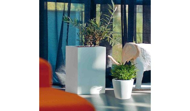 Amei - Der hohe Quadratische Pflanzentopf - 2