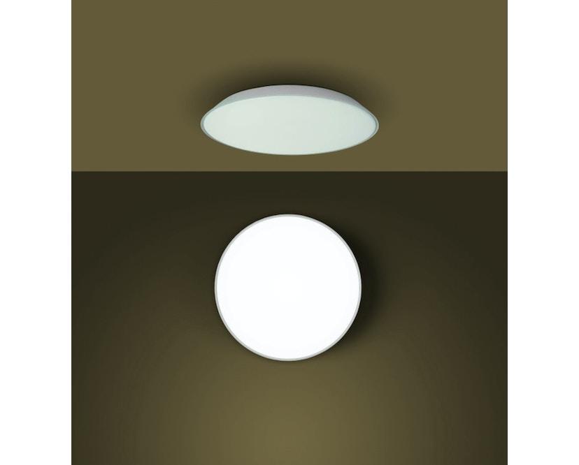 Febe Wand-/Deckenleuchte