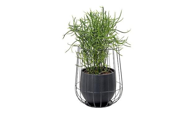 Serax - Pot in Cage Blumentopf - weiß - 3