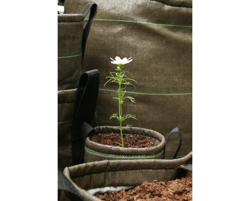 Bacsac - Pflanztasche 10L - hängend - avocadogrün  - 13