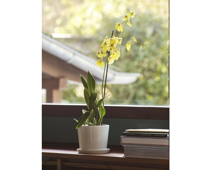 Botanical Family Blumentopf Set