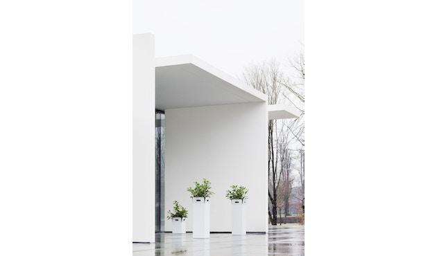 Flora - Box Pflanzengefäß - 2