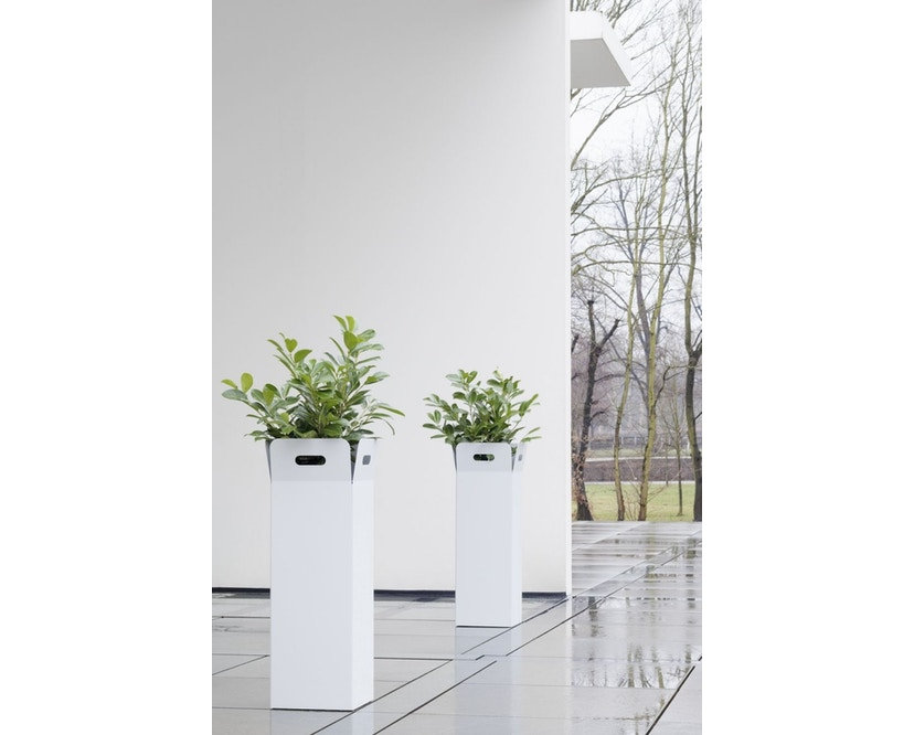 Flora - Box Pflanzengefäß - 3