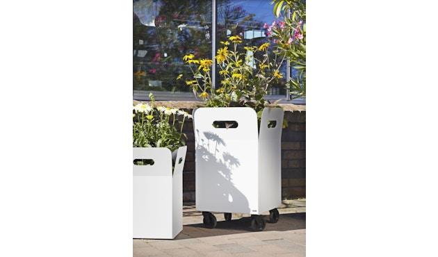 Flora - Box 20 Pflanzengefäß indoor- Lichtgrau  - 5