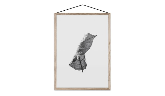 Paper Collective - Floating Leaves - 01 - A5 - 1
