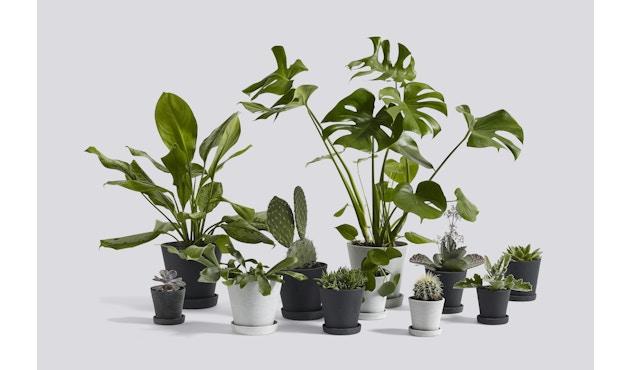 HAY - Blumentopf mit Untersetzer - grün - XXXL - 3