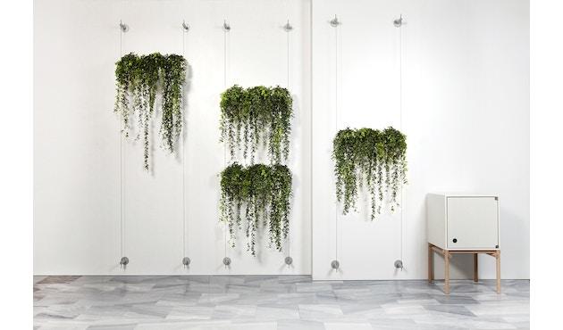 Urbanature - Hängegarten Die Wandbegrünung - 1 Pflanzröhre - 2