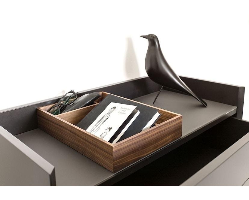 Schönbuch - Hesperide Box - rechteckig - ein Fach - .12 Eiche natur geölt - 2