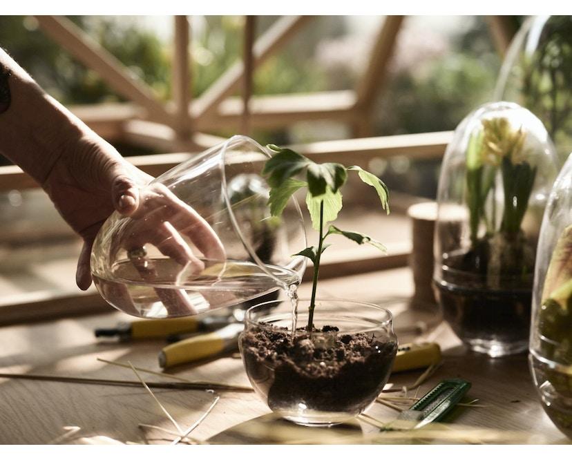 Grow Gewächshaus