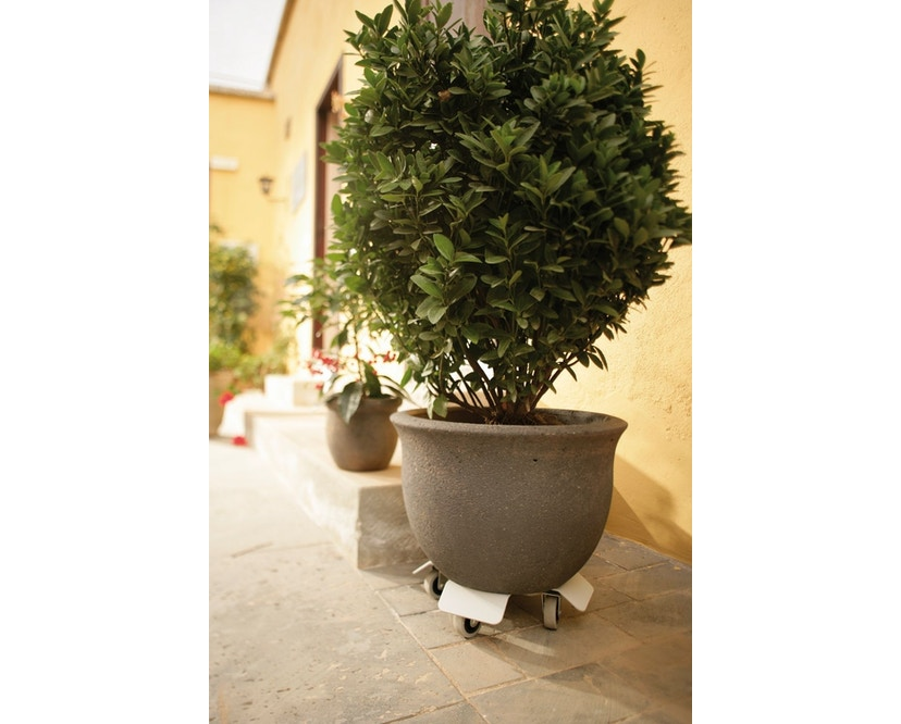 Flora - Lorry Pflanzenroller - 2