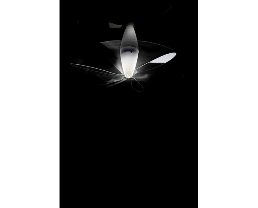 Luceplan - Blow - transparent - 6