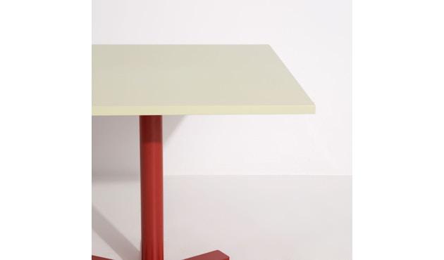 Parrot Tisch