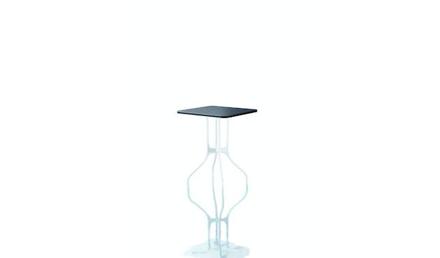Mila Tisch