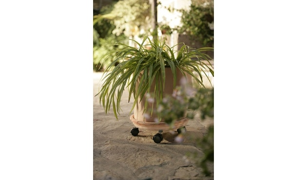Flora - Omega 25 Pflanzenroller - Verzinkt - 1