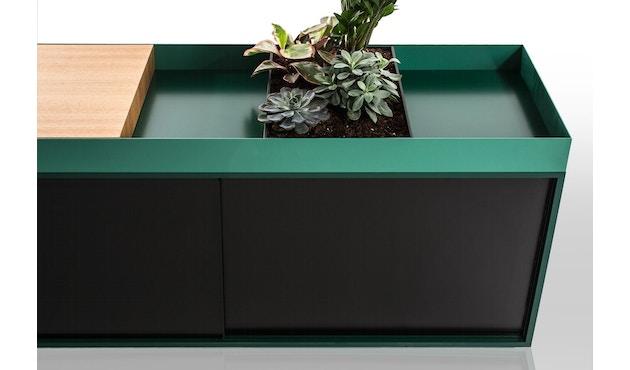 Conmoto - PAD Board  - Kombi - C - grün/grün/schwarzbraun - 3