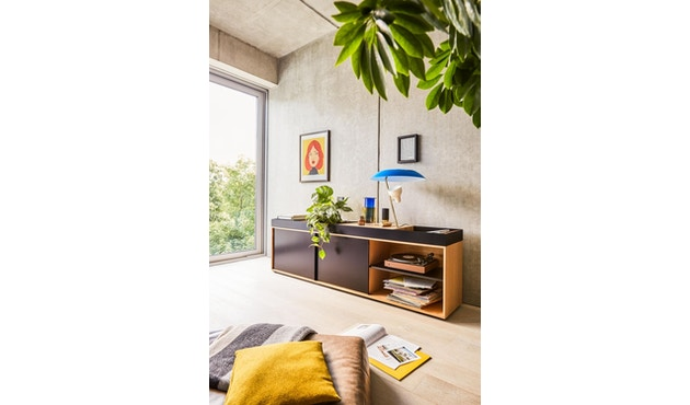 Conmoto - PAD Board  - Kombi - C - grün/grün/schwarzbraun - 8