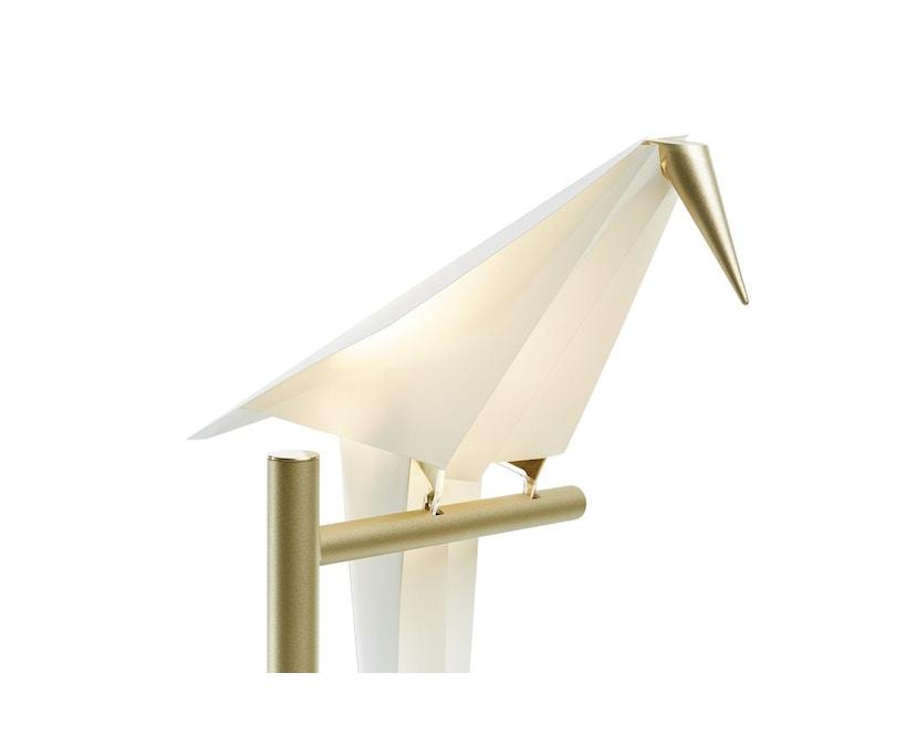 Moooi - Perch LED Tischleuchte - 2