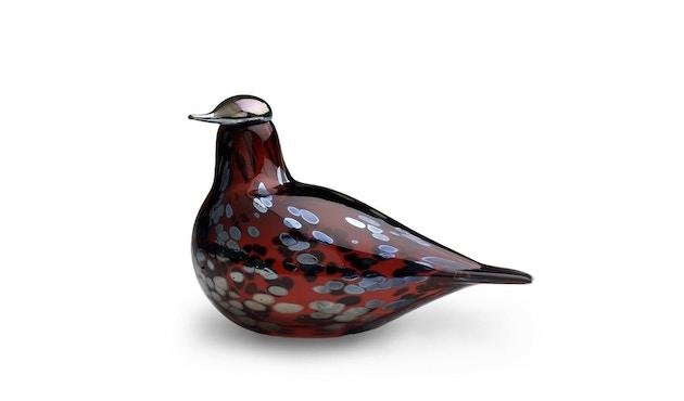 Iittala - Toikka Vogel Rotkelchen - cranberry - 1