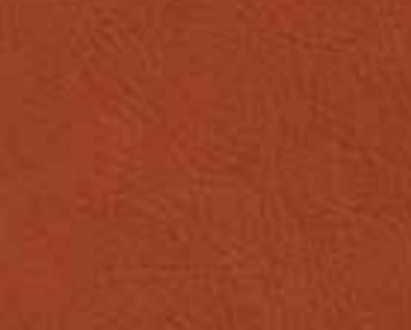 FREIFRAU - Amelie Stuhl Holzgestell - Leder Sahara Safran - 3