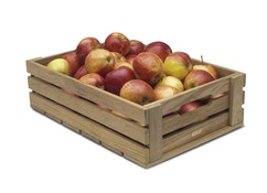 Dania Apfelkasten