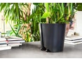 Urbanature - Pflanzentrolley Plantenbak - 5