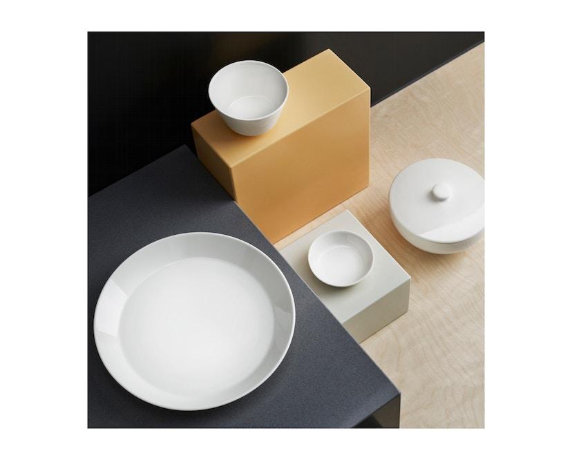 Iittala - Teema Reisteller - 2