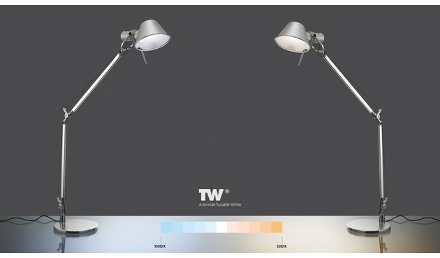 Artemide - Tolomeo Midi LED - 4