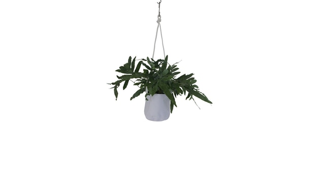 TRIMM Copenhagen - Single Flowerpot, grey - 2