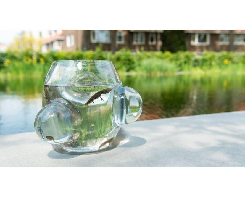 Local Habitat Glasschüssel