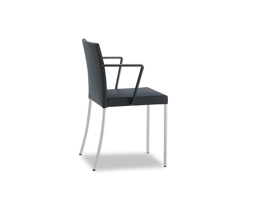 Walter Knoll - Jason Lite - Chaise à accoudoirs - 4