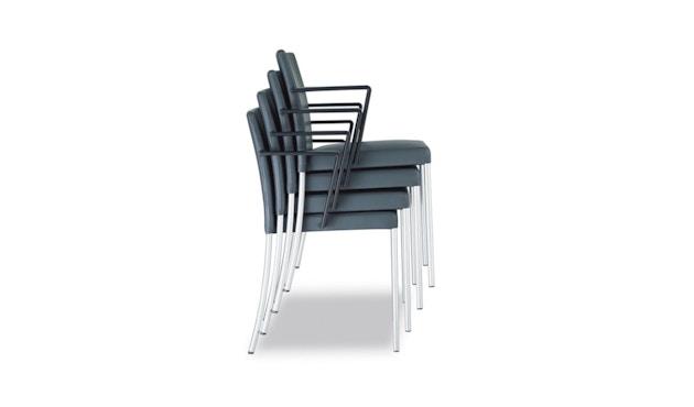 Walter Knoll - Jason Lite - Chaise à accoudoirs - 5