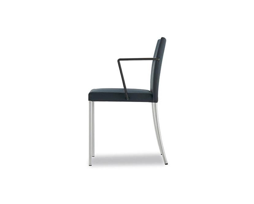 Walter Knoll - Jason Lite - Chaise à accoudoirs - 3